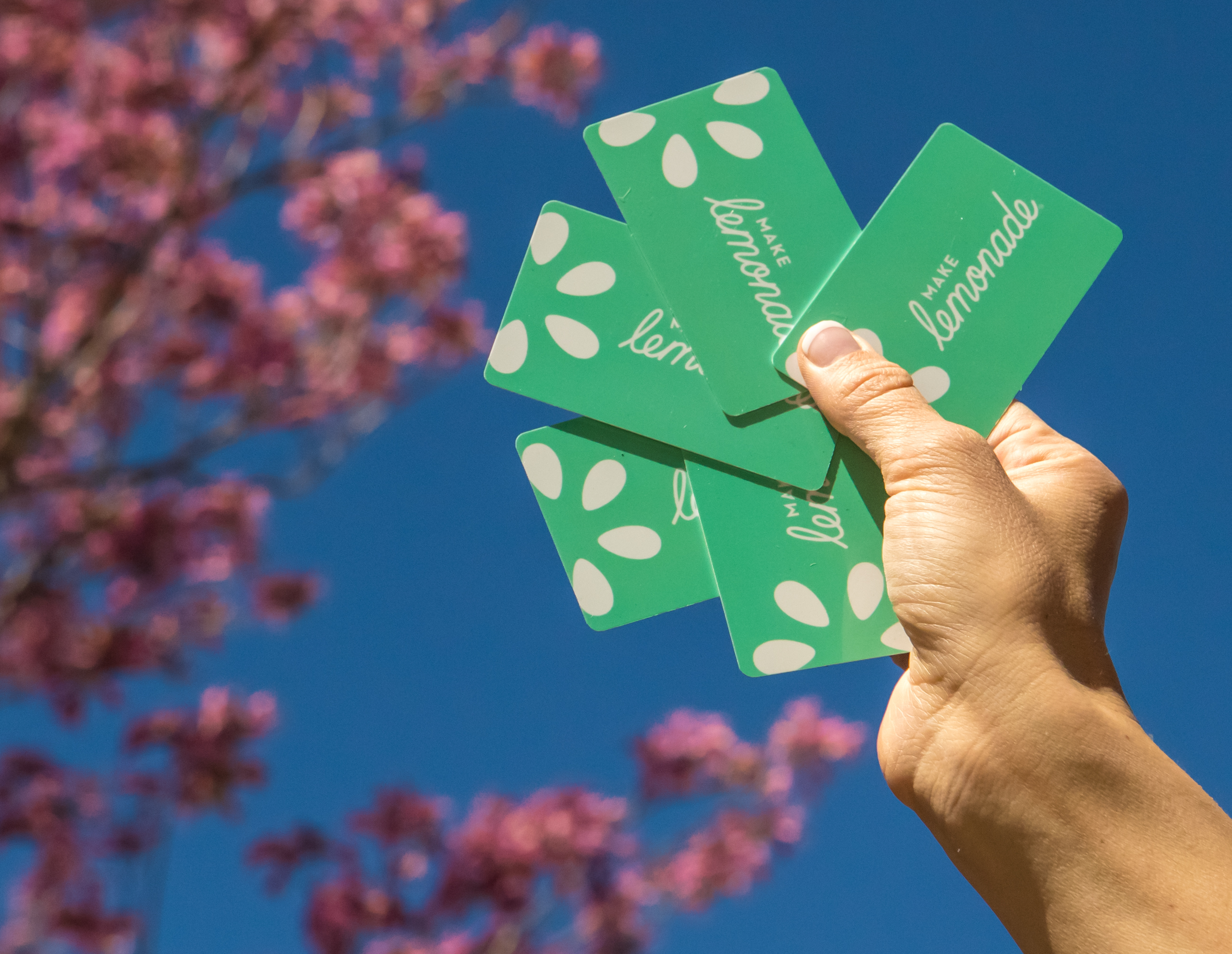 $10 Bonus Bucks | Spring Gift Card Promotion